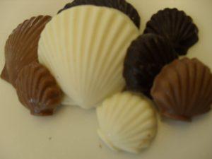 Premium Chocolate Seas Shell Assortment